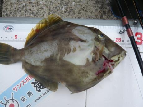 釣り大会15:01.JPG