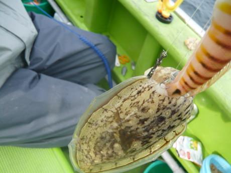 2釣り大会2011-8.JPG